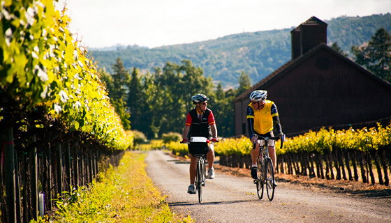 winecountry-biking-california